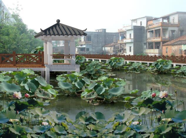 东莞市桥头镇某村美丽幸福村居规划设计方案